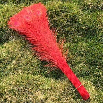 Цветные перья павлина 70-80 см. Красный цвет