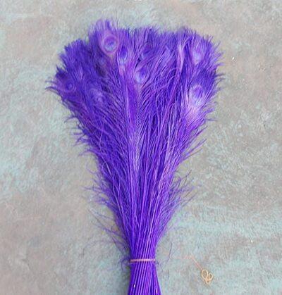 Цветные перья павлина 70-80 см. Фиолетовый цвет