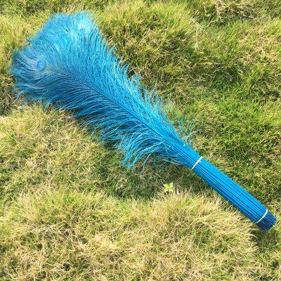 Цветные перья павлина 70-80 см. Голубой цвет