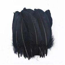 Пушистые перья гуся 15-23 см, 20 шт. Черного цвета