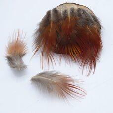 Декоративные перья фазана 5-9 см. с красным кончиком 10 шт.