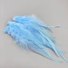 Перья петуха 10-15 см. 20 шт. Светло-голубой цвет #4