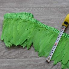 Тесьма из перьев гуся 15-20 см, 1м. Салатовый цвет