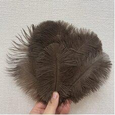 Перья страуса 15-20 см. Коричневый цвет