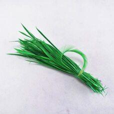 Перья гуся 15-20 см. биот (нити) - 10 шт. Зеленый цвет